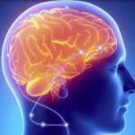 brainstimulator